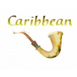 Aroma Azhad's Elixirs CARRIBEAN